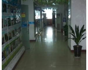 <font color='#0033CC'>郑州北大青鸟翔天信鸽中心环境</font>
