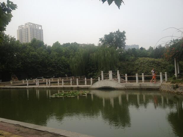 郑州北大青鸟翔天信鸽校区观赏湖