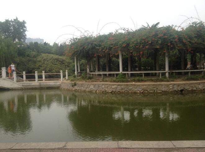 校园观赏湖