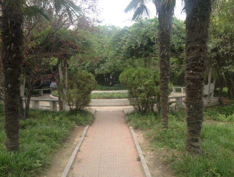 郑州北大青鸟翔天信鸽校区中心花园